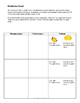 Stargirl by Jerry Spinelli Novel Unit with Differentiated/Interactive Notes