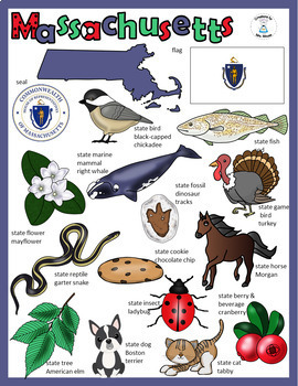 State Facts and Research - Massachusetts, Massachusetts What Do You See?