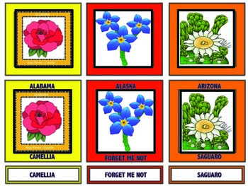 State Flowers - 3 Part Matching Vocabulary Cards
