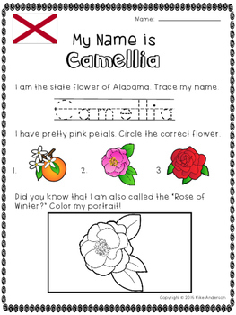 State Flowers of the USA Activity (50 Pages)