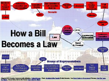 State & Local Government -  How a Bill Becomes a Law