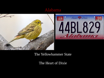 State Nicknames Powerpoint