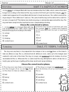 State Testing Editing Practice Set 2