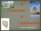 State and National Government Powerpoint