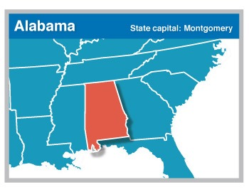 States Flash Cards | USA