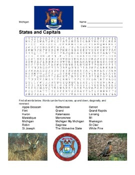 States and Capitals - Michigan State Symbols Wordsearch Puzzle