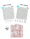 States of Matter Differentiated Word Search BUNDLE - 2 levels