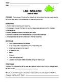 States of Matter:  Oobleck Lab