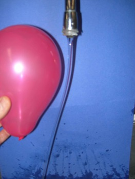 Static Electricity 1 Balloon Lab and Rubric (includes PDF