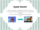 Static and Dynamic Characters Anchor Chart