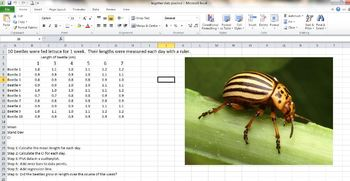 Statistics for Biology Unit (calculating and graphing data in Excel)