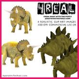 Stegosaurus and triceratops - 4 Realistic Dinosaur Clip Ar