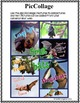 STELLALUNA - Book Study and Technology Activities