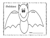 Stellaluna Comprehension Freebie!!  {Character, Setting, Problem, Solution}
