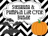 Stellaluna and Pumpkin Life Cycle Bundle