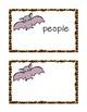 Stellaluna Vocabulary and Spelling