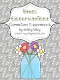 Stem Observations (Carnation Experiment)