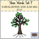 Stem Words Set F