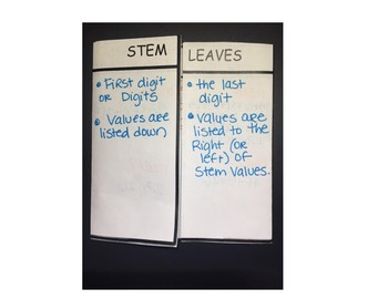 Stem and Leaf Foldable