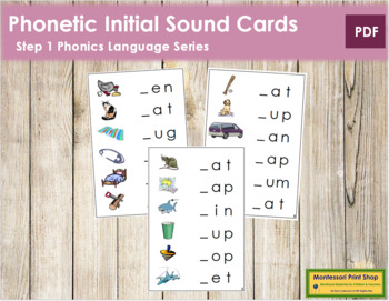Step 1: Phonetic Initial Sound Cards