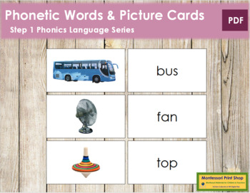 Step 1: Words and Picture Cards (real pictures)