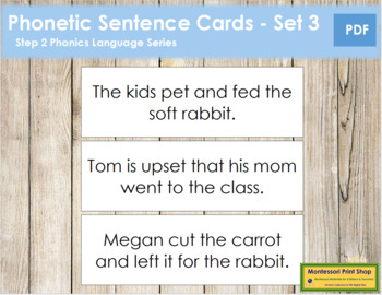 Step 2: Phonetic Sentence Cards - Set 2