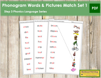 Step 3: Phonogram Word and Picture Match - Set 1