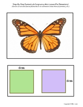 Step-By-Step Symmetry & Congruency Mini-Lesson (For Elementary)