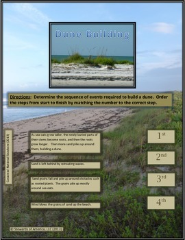 Steps to Dune Building - Sequence of Events Activity