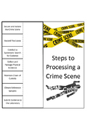Steps to Processing a Crime Scene Foldable