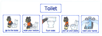 Steps to using the toilet