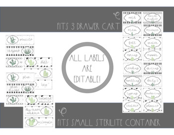 Sterilite Drawer Labels- Black & White- Cactus- Editable!