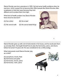 Stevie Wonder- Differentiated Story