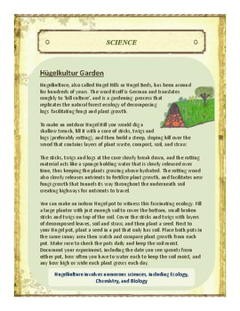 Sticks,Twigs, Logs Themed Nature Education Unit-Stage 2 (Magic Forest Academy)