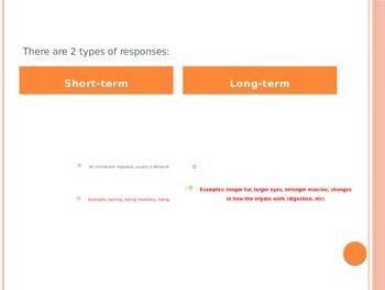 Stimulus & Response