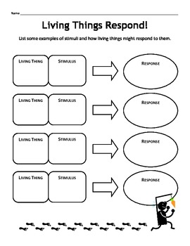 100 characteristics of living things worksheet answers animal adaptations lessons. Black Bedroom Furniture Sets. Home Design Ideas