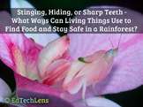 Stinging, Hiding, or Sharp Teeth - Ways Living Things Use to Find Food PDF