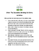 Stink: The Incredible Shrinking Kid #1 by Megan McDonald Comprehension Packet