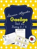 Stáisiúin Liteartha as Gaeilge - Rang 5/6 // Literacy Stat