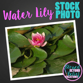 Flower Stock Photo ◆ Water Lily Stock Image ◆ Flower Photograph