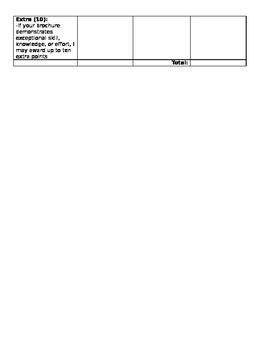 Stock Market Brochure Activity