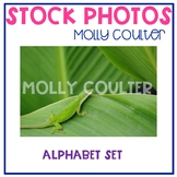 Stock Photo: Alphabet Set -Personal & Commercial Use