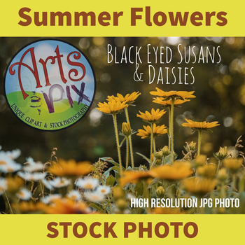 "Stock Photo - ""BlackEyed Susans & Daisies"" - Flowers - Photograph"