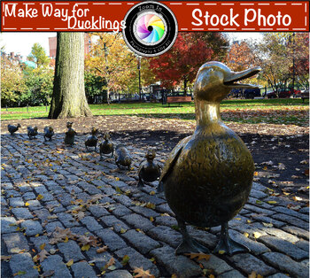 Stock Photo: Boston Make Way for Ducklings