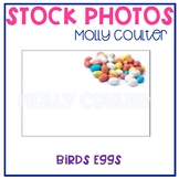 Stock Photo: Easter Birds Eggs- Personal & Commercial Use