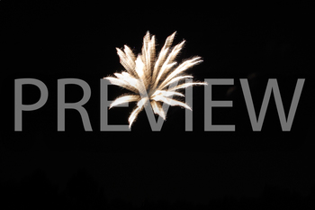 Stock Photo: Firework #3- Personal & Commercial Use