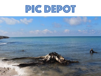 Stock Photo Shoreline Stump Nature