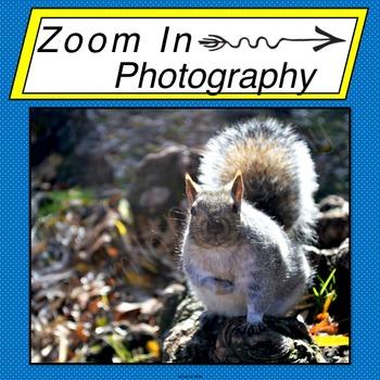 Stock Photo: Squirrel