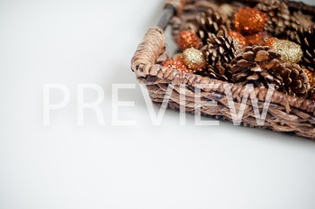 Stock Photo: Acorns & Pinecones-Personal & Commercial Use