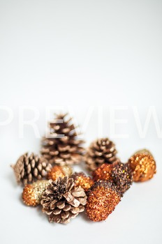 Stock Photo: Fall Acorns & Pinecones #1 -Personal & Commer